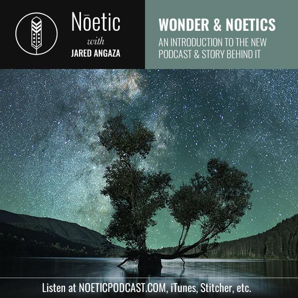 noetic_intro_social