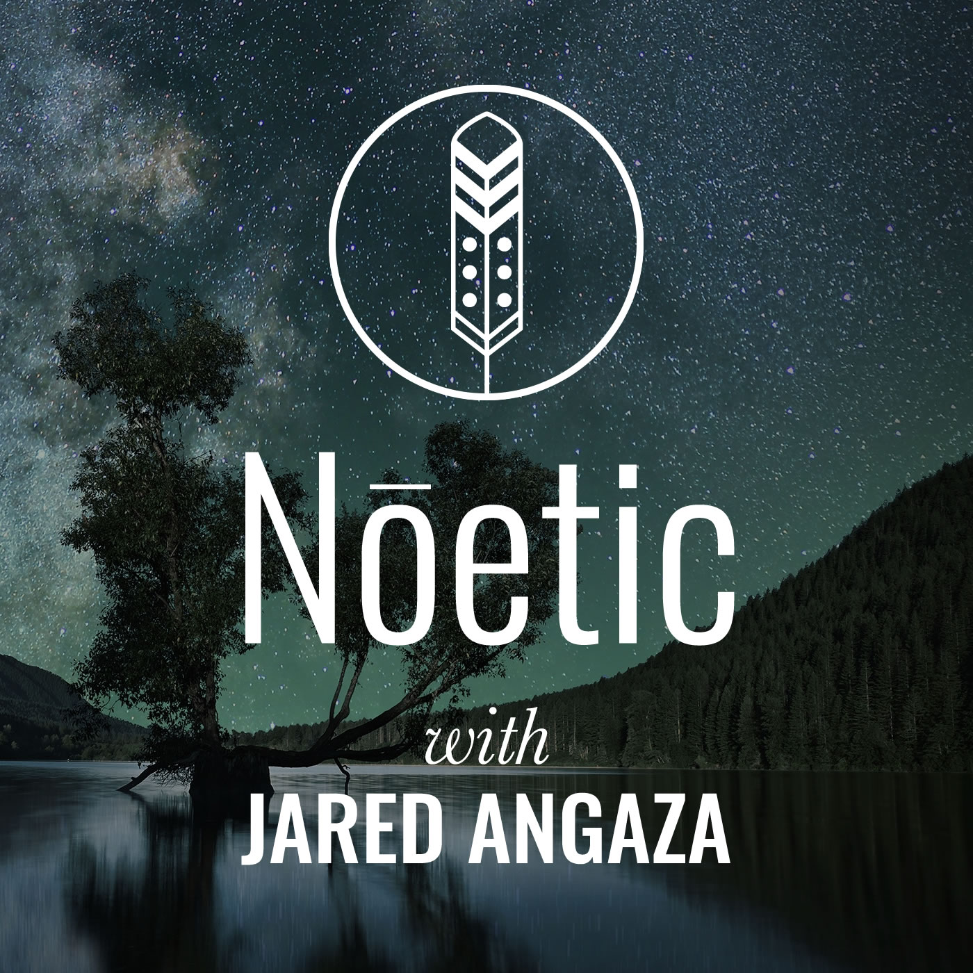 noetic_podcast_art